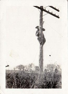 William Wachter climbing electrical pole for electrical service