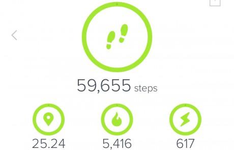 Megan Lloyd Fitbit data after completing Trailblaze Challenge hike